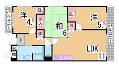 駐車場3千円 敷金礼金なし 人気のリノベーションマンション 304の間取
