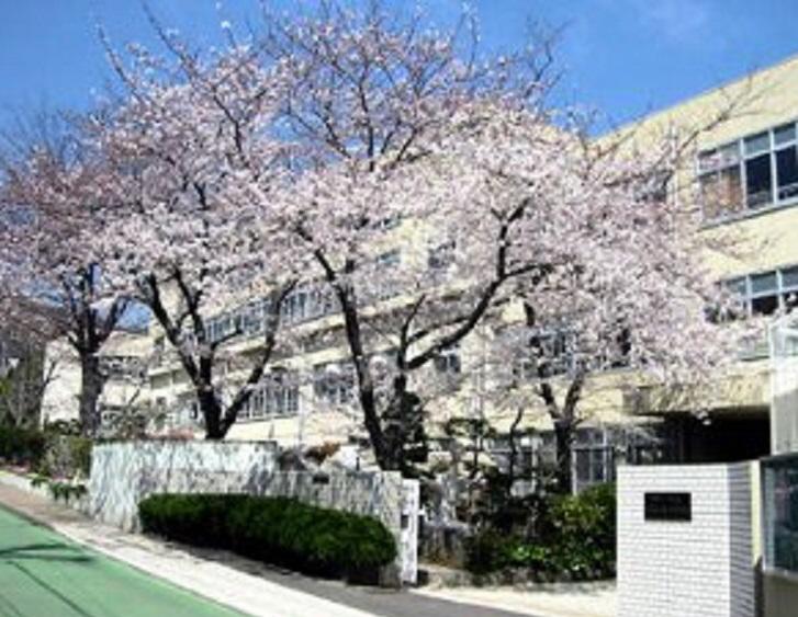 物件番号: 1111287991 プティ・リヴィエール  神戸市長田区平和台町3丁目 1LDK アパート 画像20